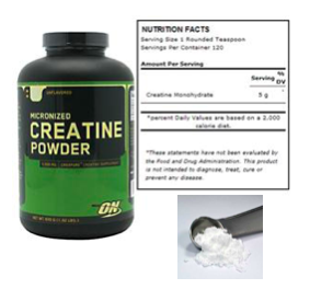 A description of creatine monohydrate as the most popular and effective bodybuilding supplement on t