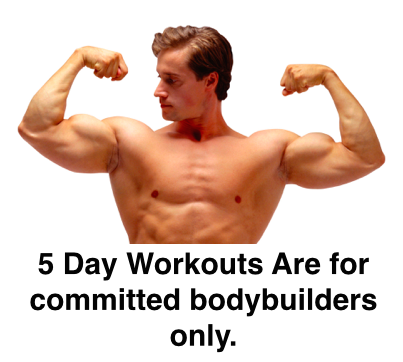 5 Day Muscle Building Workout Routine For Max Gains