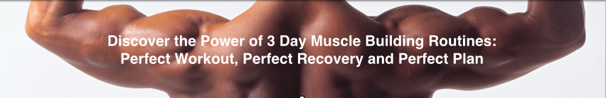 3 Day Muscle Building Workout Routines to Build Muscle Mass