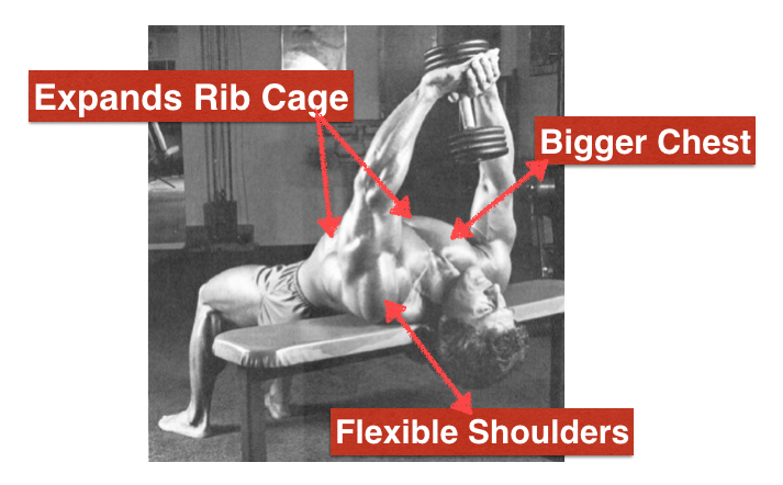Pullovers Exercise To Build Chest Amp Back Muscles