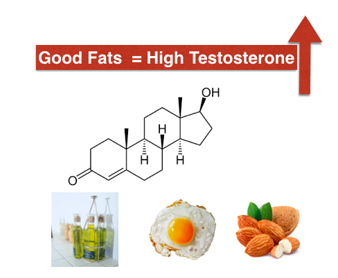 building testosterone levels naturally