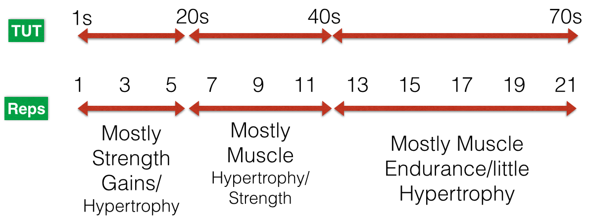 Hypertrophy To Build Muscle