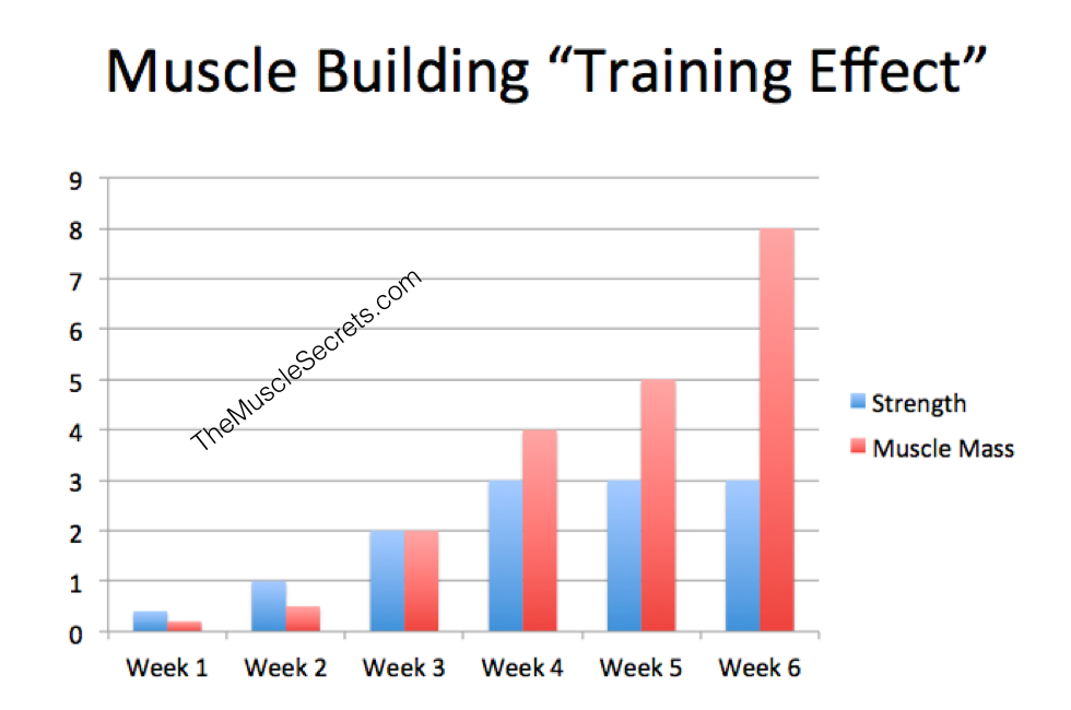The SIX Week Training Effect Process