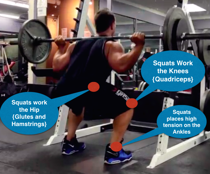The Importance Of Squats For Building Muscle M Fast