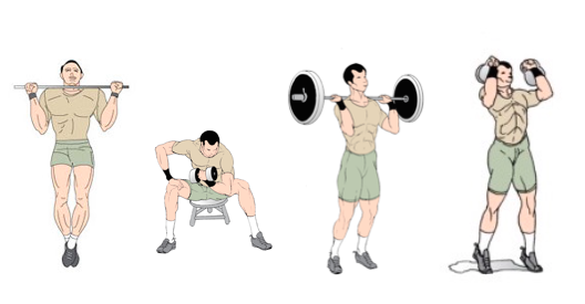 Best Mass Building Routine For Hardgainers